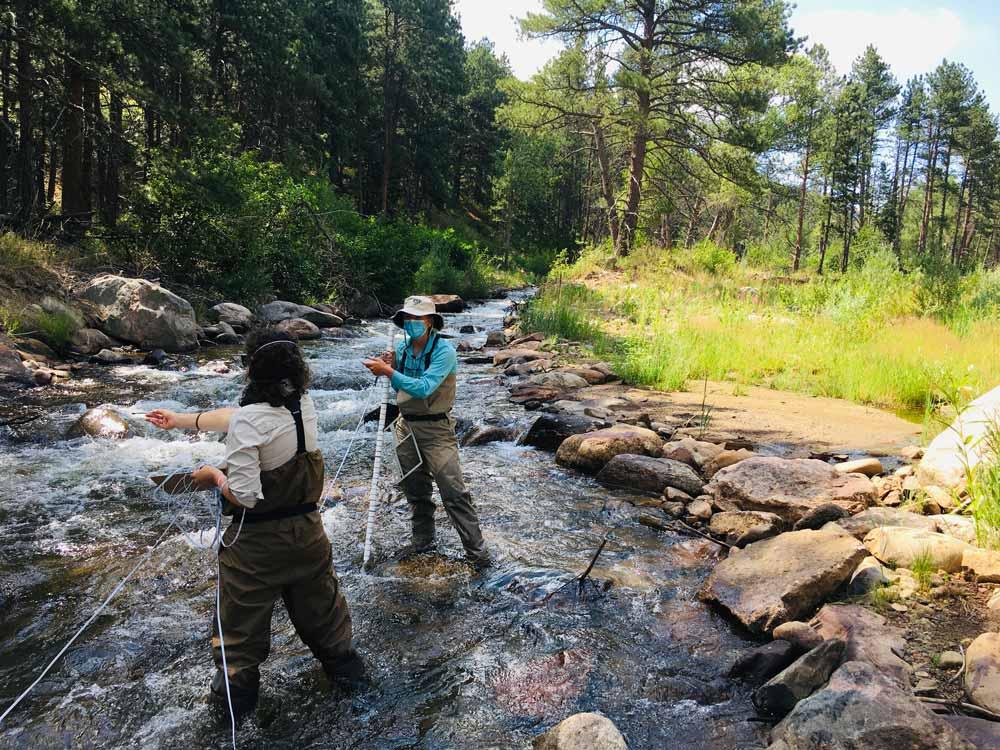 Watershed Monitoring