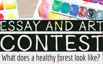 Essay and Art Contest