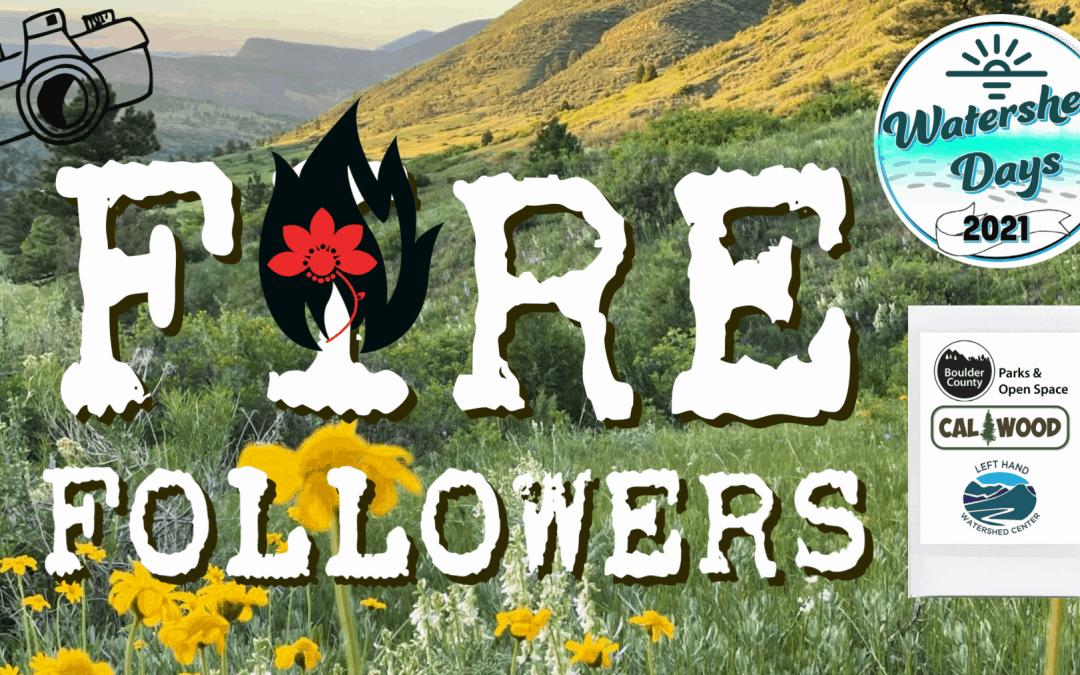 Fire Followers – Cal-Wood Burn Scar, Boulder