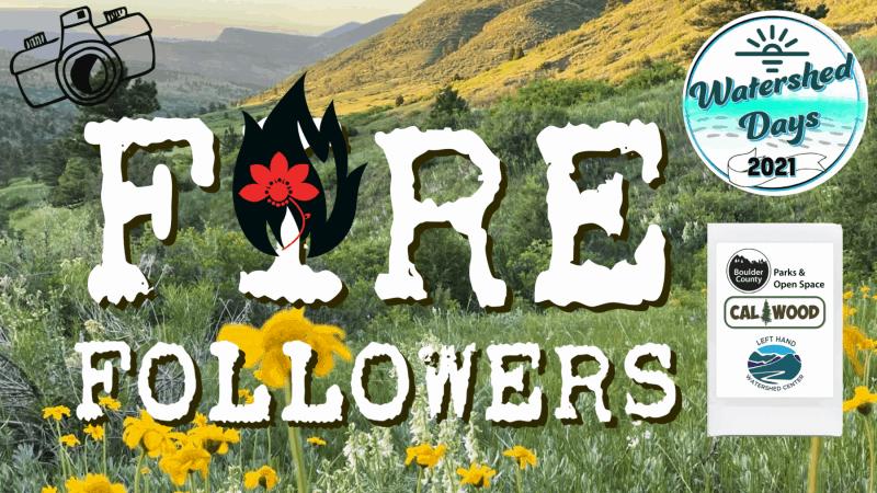 Fire Followers