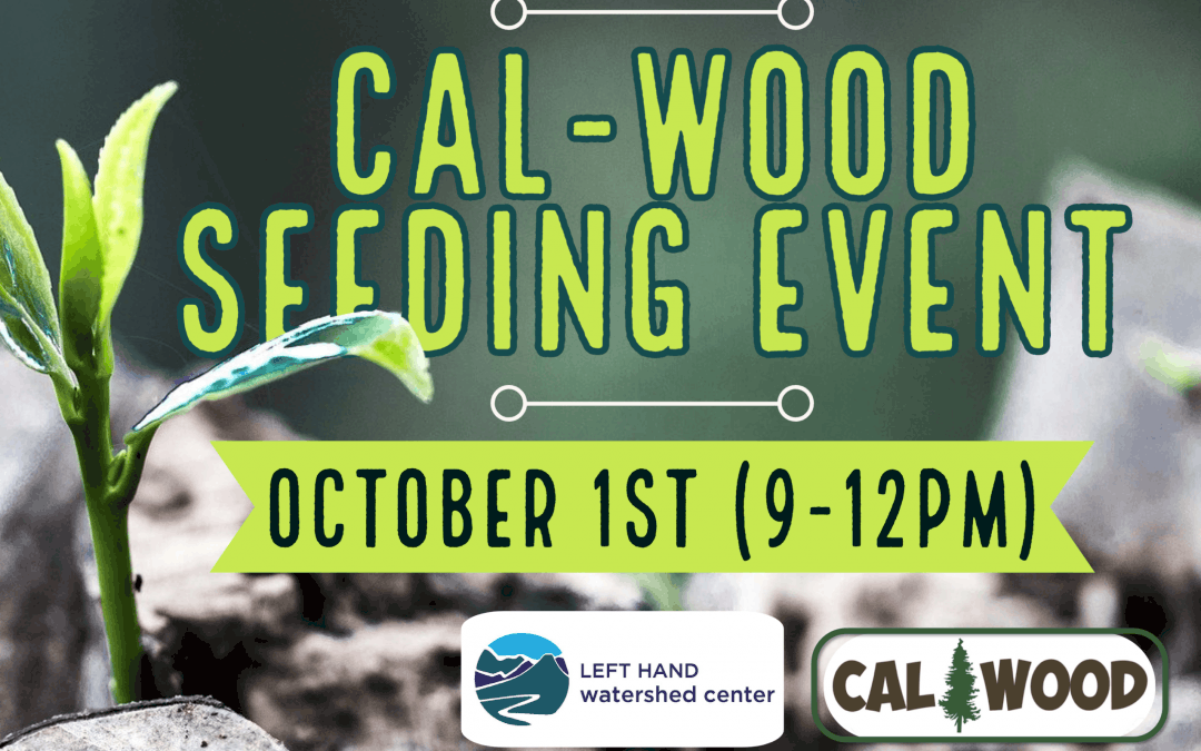 Cal-Wood Seeding and Forest Tour